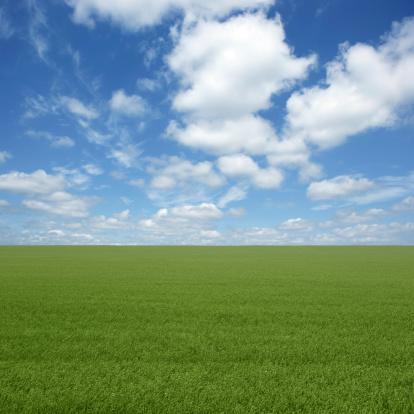 Saskatchewan「XXL green grass field」:スマホ壁紙(8)