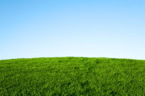 Hill「Green Grass and Blue Sky」:スマホ壁紙(12)