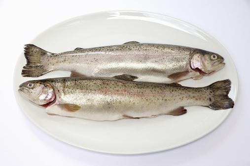 建築「Two fresh trout on plate, close-up」:スマホ壁紙(5)