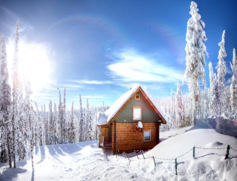 Log「Cabin in the woods」:スマホ壁紙(1)