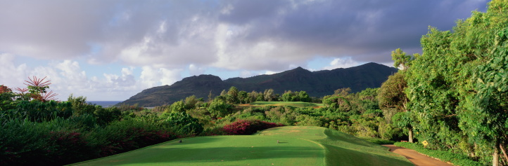 Sand Trap「5TH HOLE AT KIELE COURSE IN KAUAI LAGOONS, HAWAII」:スマホ壁紙(5)