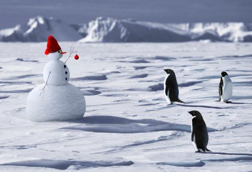 snowman「A SNOWMAN MEETS THREE PENGUINS」:スマホ壁紙(14)