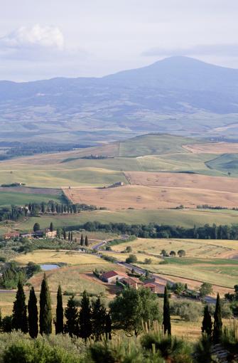 Monte Amiata「CYPRESS TREES, TUSCANY,  ITALY」:スマホ壁紙(4)