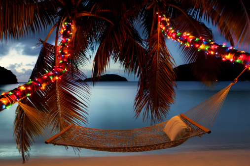 Caribbean「hammock between palm trees with Christmas lights at the beach」:スマホ壁紙(16)