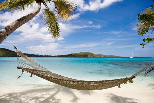 Caribbean Sea「hammock between palm trees on untouched beach in the Caribbean」:スマホ壁紙(2)