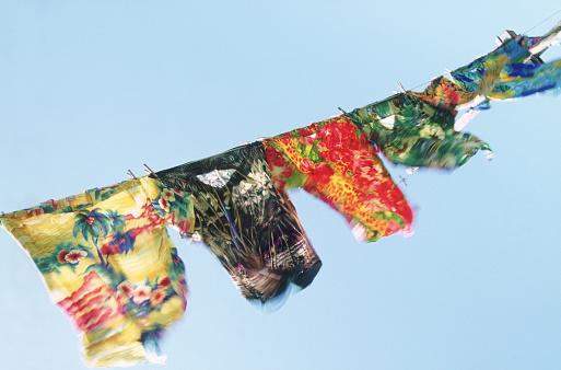 Wind「Hawaiian Shirts Drying in the Breeze」:スマホ壁紙(17)