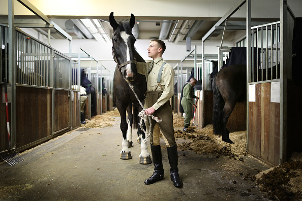 Government Building「A Day In The Life Of The Household Cavalry Ahead Of The Diamond Jubilee」:写真・画像(0)[壁紙.com]