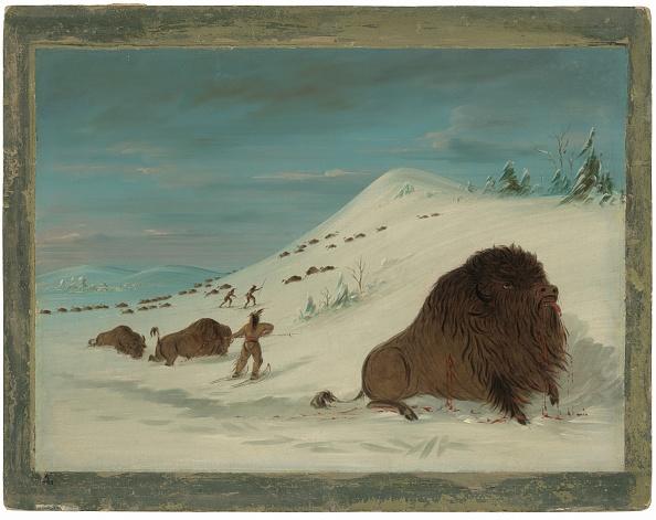 Snowdrift「Buffalo Lancing In The Snow Drifts - Sioux」:写真・画像(13)[壁紙.com]