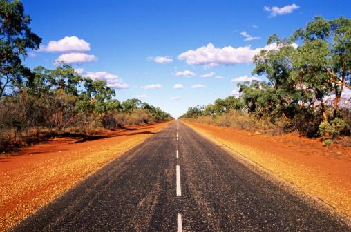 Queensland「Deserted tree-lined road,Queensland Australia」:スマホ壁紙(7)