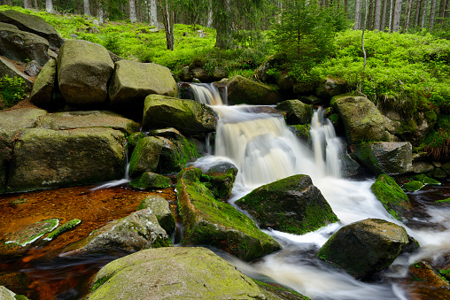 Harz Mountain「Waterfall of the mountain stream Warme Bode (Upper Bodefall). Warme Bode, Braunlage, Harz, Lower Saxony, Germany, Europe.」:スマホ壁紙(5)