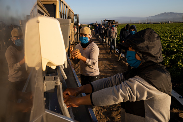 Farm「Immigrant Agricultural Workers Critical To U.S. Food Security Amid COVID-19 Outbreak」:写真・画像(12)[壁紙.com]