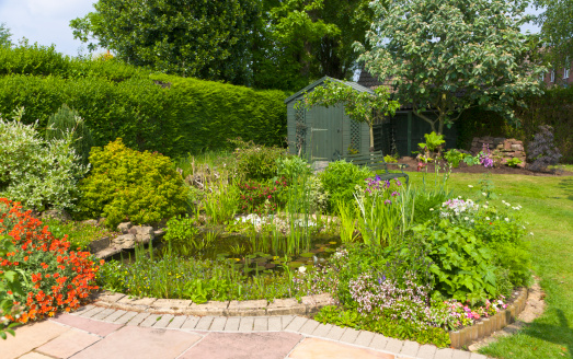 Standing Water「Back garden with pond and garden shed, Wirral, Merseyside, England」:スマホ壁紙(3)