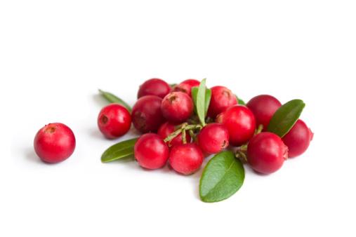 Cranberry「Cranberries on white」:スマホ壁紙(1)