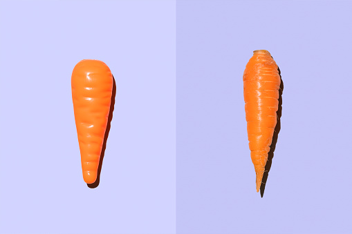 Illusion「Plastic carrot beside real carrot」:スマホ壁紙(12)