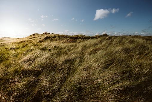 Extreme Weather「Coast Landscape Island of Amrum」:スマホ壁紙(10)