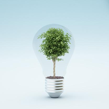Planting「Light bulb with plant」:スマホ壁紙(0)