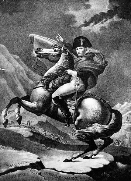 Horse「Napoleon Bonaparte」:写真・画像(19)[壁紙.com]