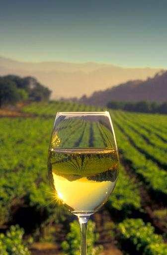 Wineglass「Chardonnay in wine glass」:スマホ壁紙(18)