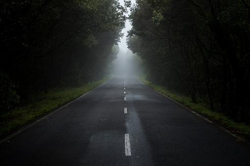 Atlantic Islands「Empty country road in the fog」:スマホ壁紙(12)