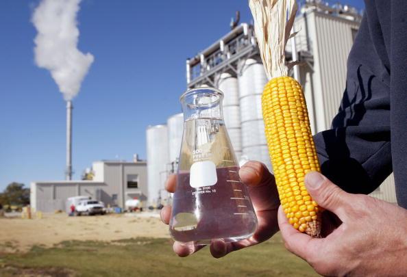 Corn「Illinois Plant Produces Alternate Fuel」:写真・画像(4)[壁紙.com]
