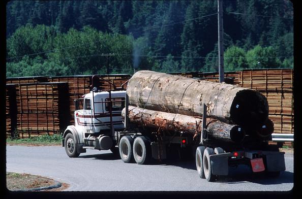 Lumber Industry「California Redwood Industry」:写真・画像(14)[壁紙.com]