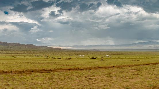 Horse「Hilly steppe Republic of Mongolia.」:スマホ壁紙(16)
