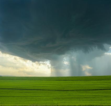 Cumulus Cloud「Perfect Storm」:スマホ壁紙(19)