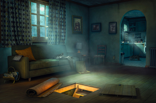 House「Mysterious hidden staircase to basement」:スマホ壁紙(10)
