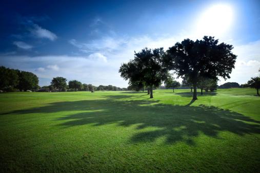 Hole「Sun shining on golf fields - backlit with shadows」:スマホ壁紙(8)