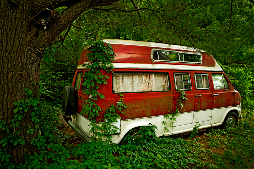 Remote Location「Foliage growing on abandoned camper van in forest」:スマホ壁紙(1)