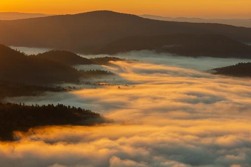 グリーン山脈「日の出の朝霧はバーモントの緑の山脈の谷を埋める」:スマホ壁紙(19)