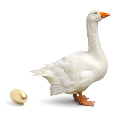 金運「グレーグースを落ち着いたゴールドの卵、白で分離」:スマホ壁紙(16)