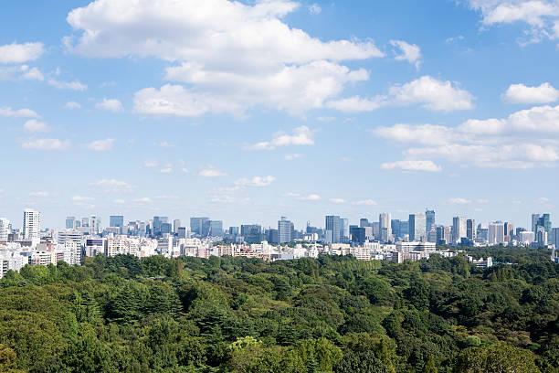 city view and green:スマホ壁紙(壁紙.com)