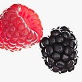 Raspberry壁紙の画像(壁紙.com)