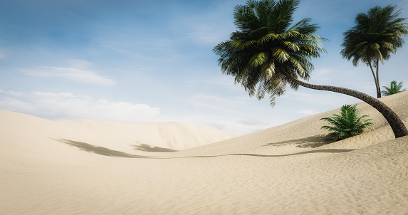 Tropical Tree「Idyllic Desert Landscape」:スマホ壁紙(8)