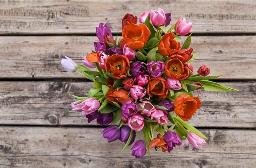 Abundance「Tulips」:スマホ壁紙(0)