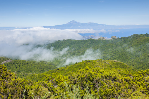 Canary「La Gomera, Panoramic view including Pico de Teide (Tenerife Island) from the top of Alto de Garajonay mount」:スマホ壁紙(15)