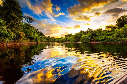 Amazon Rainforest「Dramatic landscape on a river in the amazon state Venezuela」:スマホ壁紙(15)