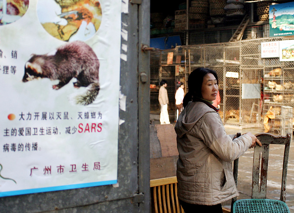 Mammal「South China Coping With Fears Of SARS Outbreak  」:写真・画像(0)[壁紙.com]