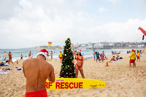 Christmas Decoration「Christmas Celebrations In Australia」:写真・画像(2)[壁紙.com]