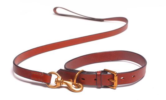 Weekend Activities「dog leash and collar death of dog」:スマホ壁紙(4)