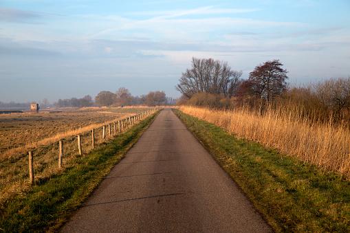 North Brabant「Straight road in Biesbosch National Park, Netherlands」:スマホ壁紙(14)