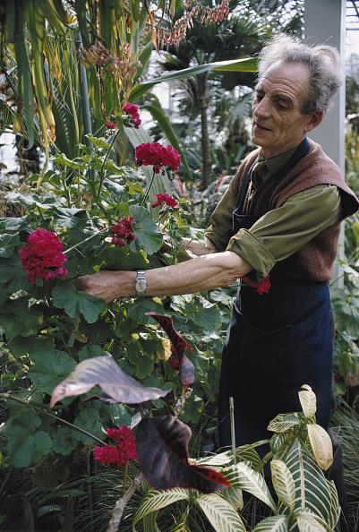 Recreational Pursuit「Torquay Gardens」:写真・画像(7)[壁紙.com]