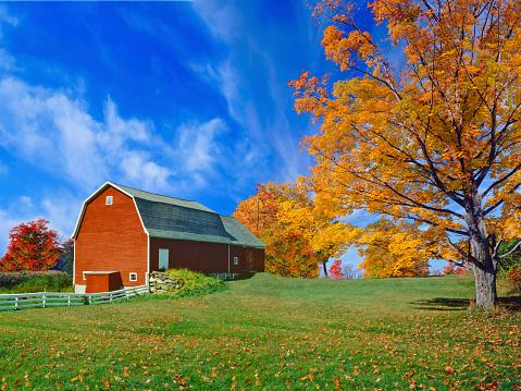 グリーン山脈「ニューイングランド地方の秋」:スマホ壁紙(19)