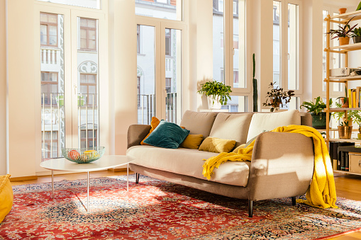 Living Room「Living room area with Persian rug」:スマホ壁紙(14)