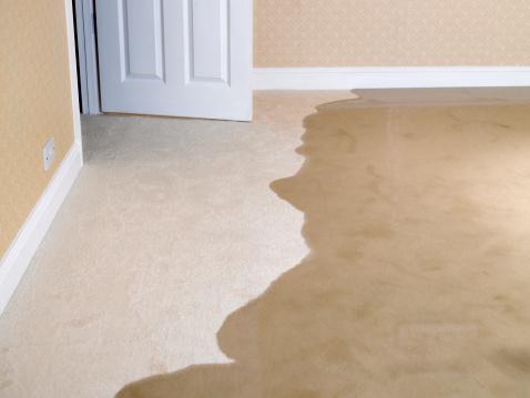 Flood「Living room carpet flooding」:スマホ壁紙(4)