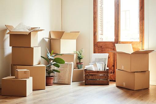 配置「新しいアパートでボックスや鉢植えの植物を移動」:スマホ壁紙(5)