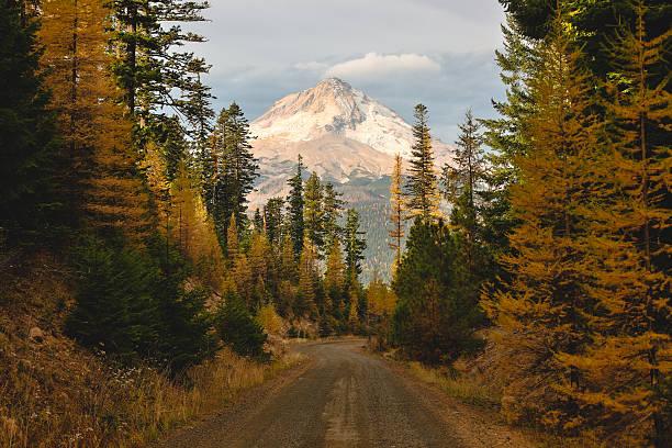 Mount Hood Framed with Nature:スマホ壁紙(壁紙.com)