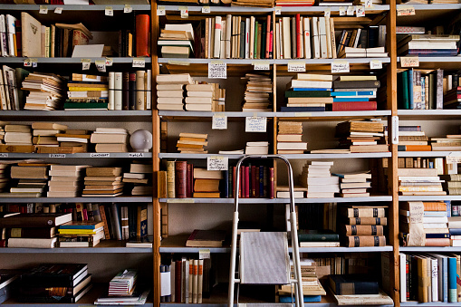 Old-fashioned「Stepladder by bookshelves in library」:スマホ壁紙(14)
