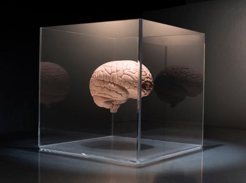 Contemplation「Brain in a box」:スマホ壁紙(16)